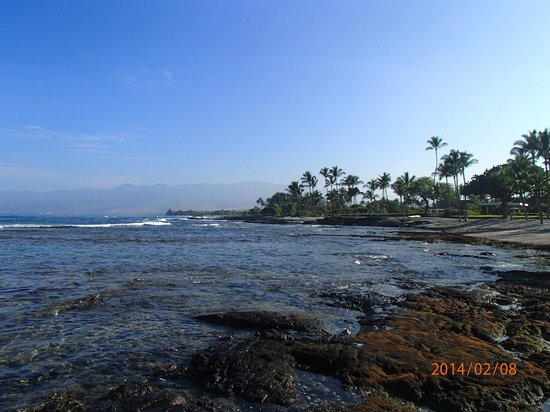 Mauna Lani Bay Hotel & Bungalows: Beavh view