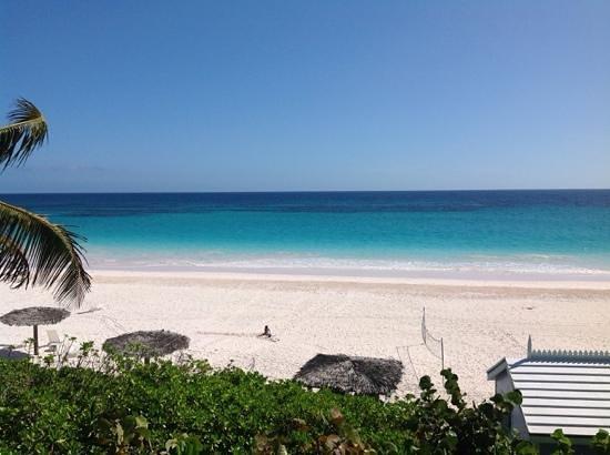 Pink Sands Resort: Pink Sands beach