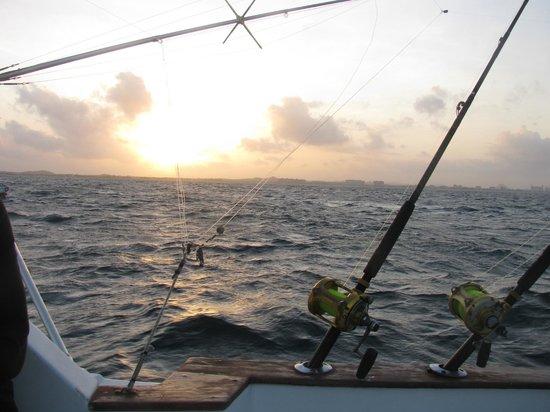 Melina Charters: sunrise off the coast