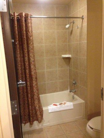 Kalahari Resorts & Conventions: Bathroom