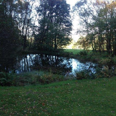 Dundarroch : Pond