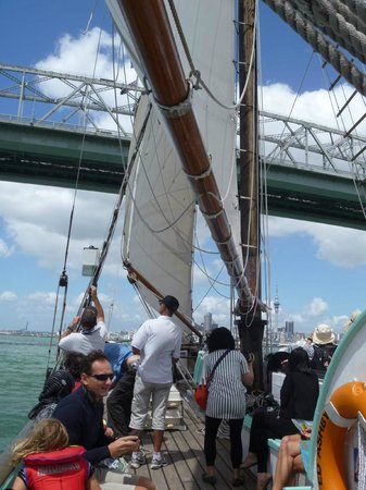 Museo Marítimo Voyager de Nueva Zelanda: Sailing under Auckland bridge from  the museum