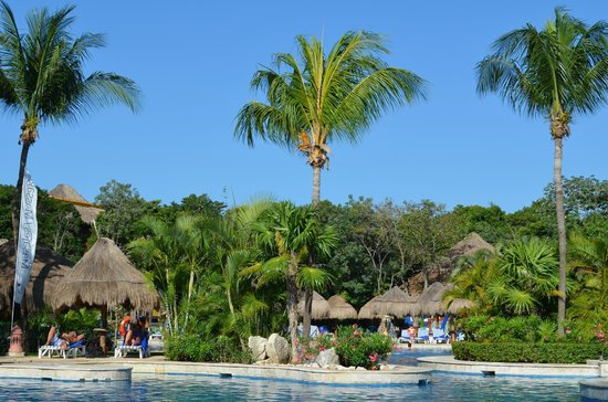 Iberostar Tucan Hotel: A view from the pool looking at the jungle area