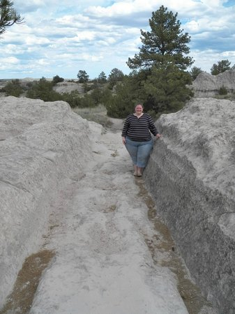 Oregon Trail Ruts: Wagon rut