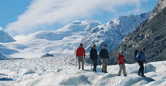 Southern Alps Guiding: getlstd_property_photo