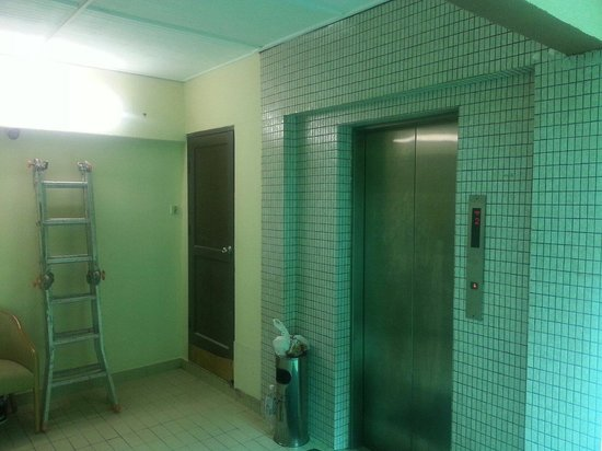 Hotel De' Grand Orchard: Unrenovated lift with the 'decoration'