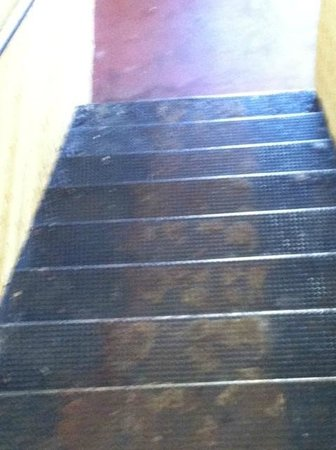Lake Roy Beach Inn: rusty , slippery stairs