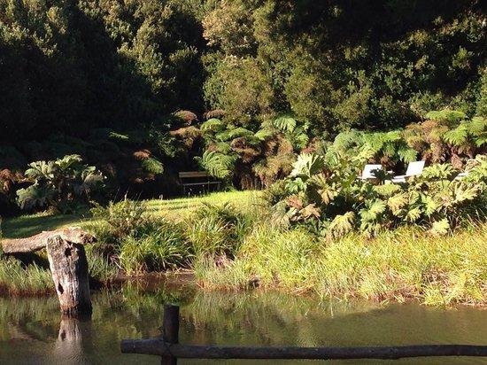 Fundo Santa Ines de la Vega : Un lugar de descanso