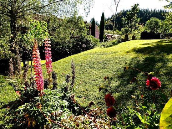 Retiro Park Lodge : Barn view