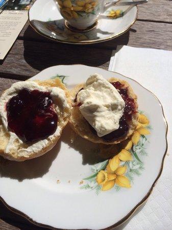Oruawharo Homestead & Garden: Scones, with cream and homemade jam