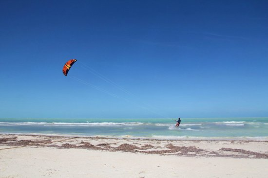 Holbox Hotel Casa las Tortugas - Petit Beach Hotel & Spa: Our beach /kitelife