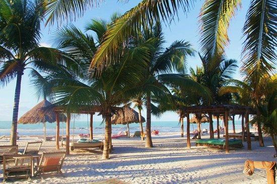 Holbox Hotel Casa las Tortugas - Petit Beach Hotel & Spa: The beach area