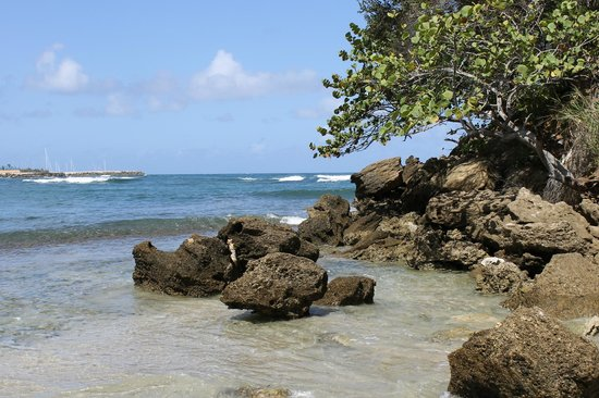 The Tropical at Lifestyle Holidays Vacation Resort: Brach