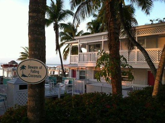 Amoray Dive Resort : Cute buildings and falling coconuts - classic Florida Keys.