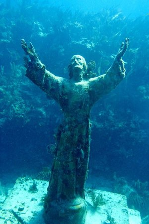 Amoray Dive Resort: Christ of the Abyss dive site.