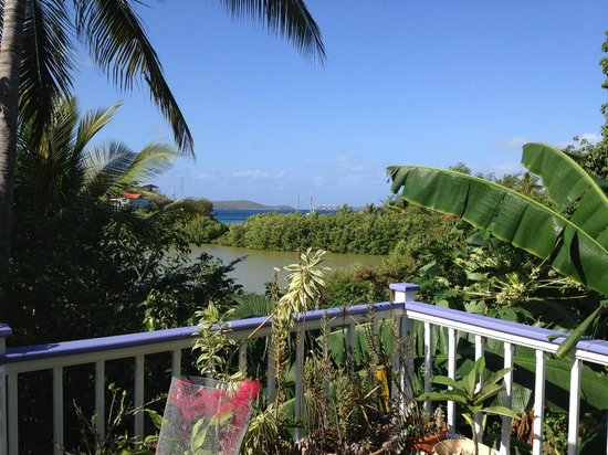 Garden by the Sea B&B : Frank Bay -  A View From The Deck