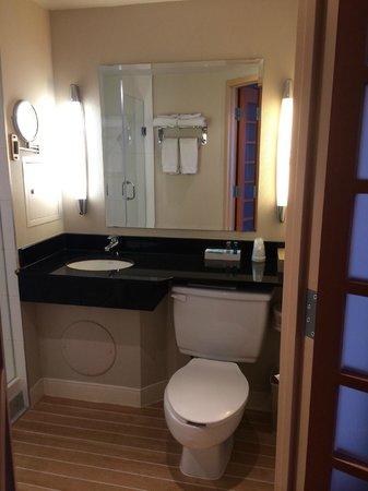 Novotel Ottawa : Bathroom and vanity