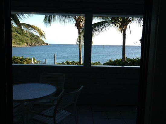 Coconut Coast Villas : View from Alamanda Studio