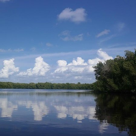 Tour The Glades - Private Wildlife Tours : A very serene place.