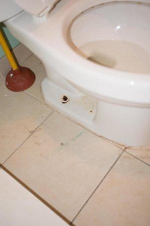 Motel Blu: That urine. A lot of urine.