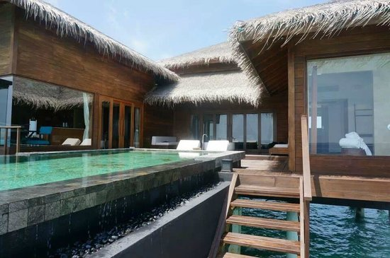 Dhevanafushi Maldives Luxury Resort Managed by AccorHotels : villa