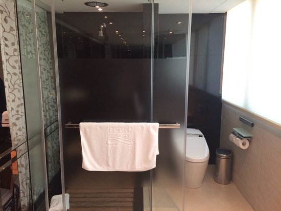 Hotel Eclat Taipei: Shower and toilet share a door