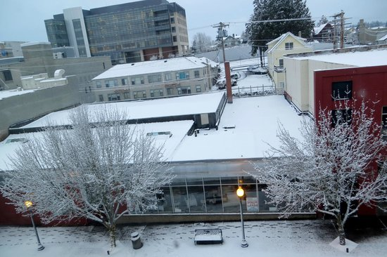 Fairfield Inn & Suites Seattle Bremerton: View from Rm 426 morning after snowfall