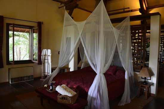 Amatao Tropical Residence: My Favoriate bedroom