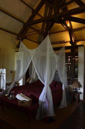 Amatao Tropical Residence : Stylish Roof