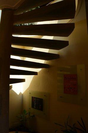 Amatao Tropical Residence: Music of Light