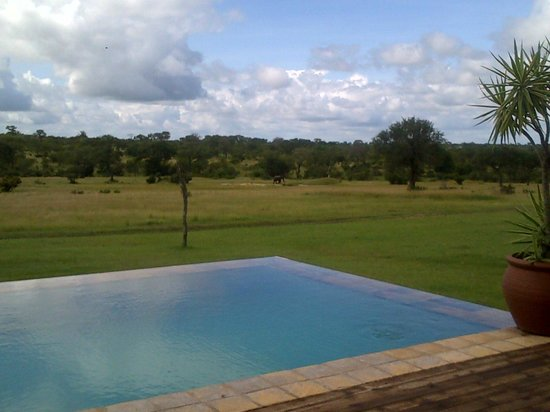 Nkorho Bush Lodge: View from the pool/deck