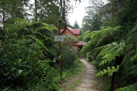 Candlelight Mountain Retreats & Valley Ranges Getaways: Entrance to Clare Cottage