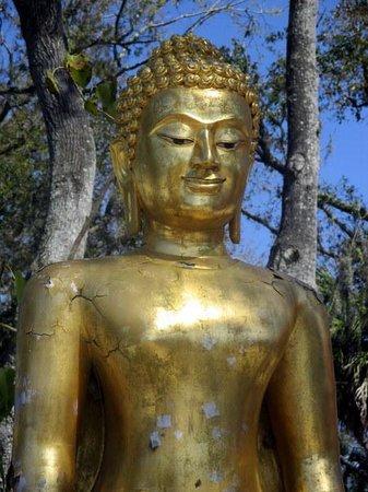 Wat Mongkolrata Temple: Beautiful