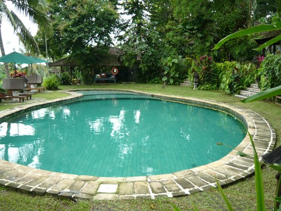 Alam Sari : the pool area