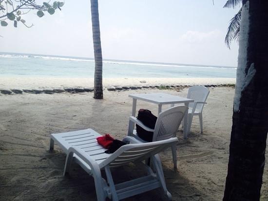 Ripple Beach Inn: kleines Paradies