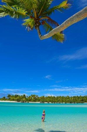 Aitutaki Lagoon Resort & Spa : Beach