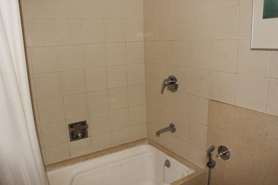 Pride Plaza Hotel Ahmedabad: Bathroom