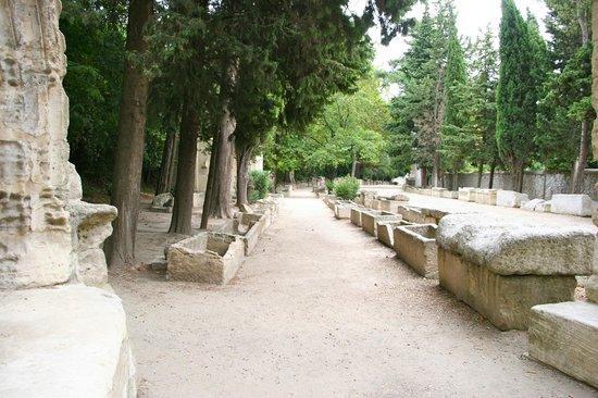 Les Alyscamps : L'allée des sarcophages
