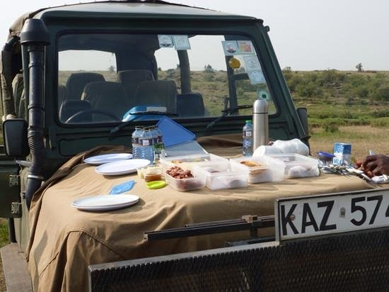 Little Governors' Camp: picnic breakfast on game drive