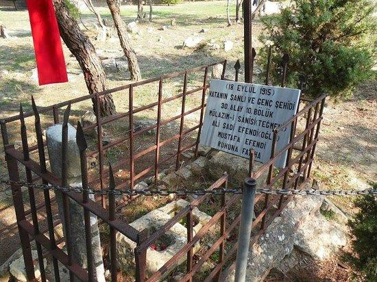 Çanakkale Şehitler Abidesi - Picture of Canakkale ...