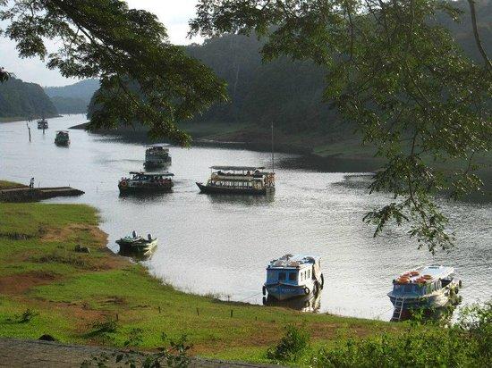 Cardamom County: Periyar lake