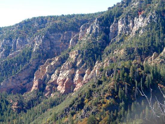 Lo Lo Mai Springs : A view of the Sedona Red Rocks, scenic town 10 miles north of Lo Lo Mai!