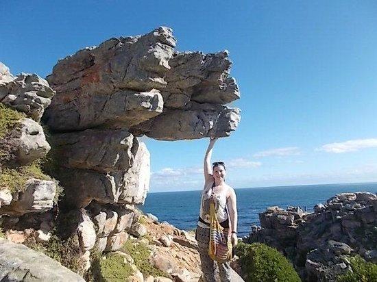 Baz Bus - Day Tours : fun times @ Cape Point