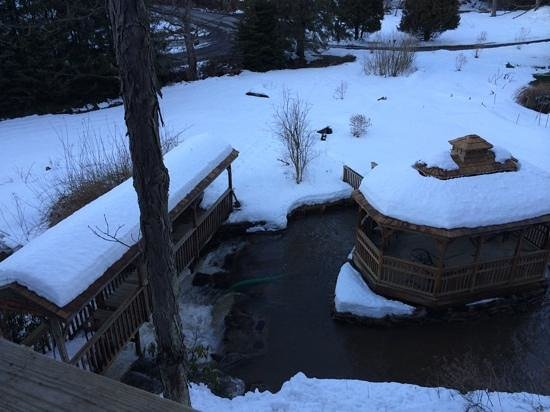 Streams and Dreams: view from the deck