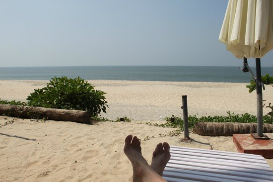 Palm Beach Resort: view from the sunbeds