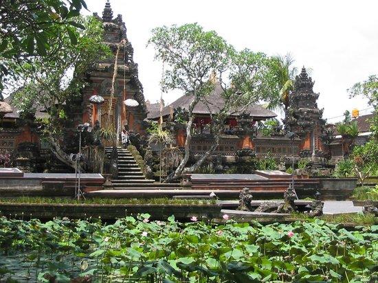 Saraswati Temple: puri saren