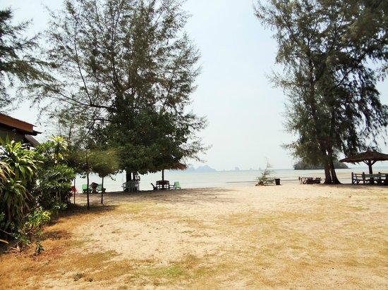 Pan Beach Bungalows: devant les bungalows