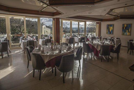 Hotel Restaurant Lamy : Restaurant & vue
