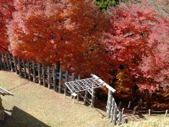 Joshi Park Asuke-jo Castle: 足助城の高櫓2階より臨む
