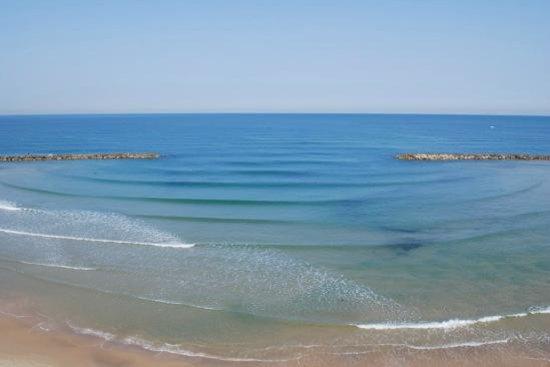 Dan Tel Aviv Hotel : Beach area